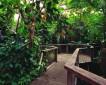 """Das """"Jahr der Wälder"""" ist beendet –  aber der Regenwald in Düsseldorf bleibt"""